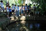 Cremosano 2010. Visita didattica ad un fontanile